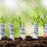 Meinen Cash-Bestand mit P2P-Krediten optimieren